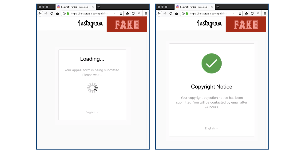 Decoy pages displayed after exfiltration