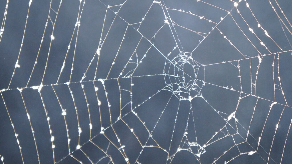 Then Wait, What is the Dark Web Exactly?